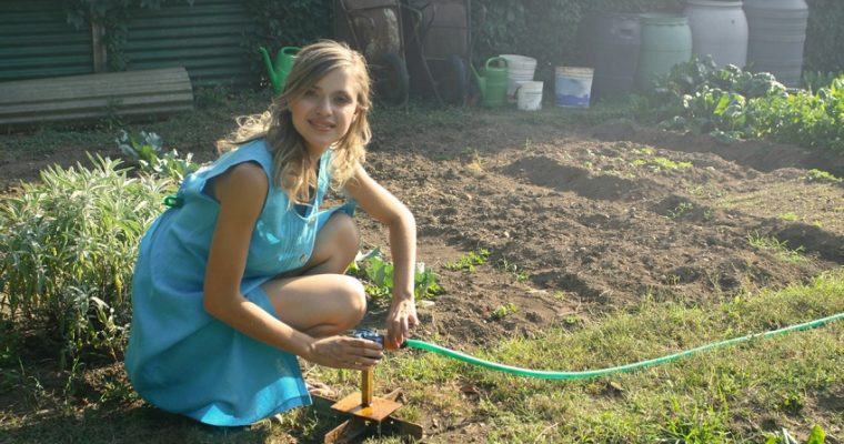 Setting Up a Small Vegetable Garden at Home during this Pandemic?