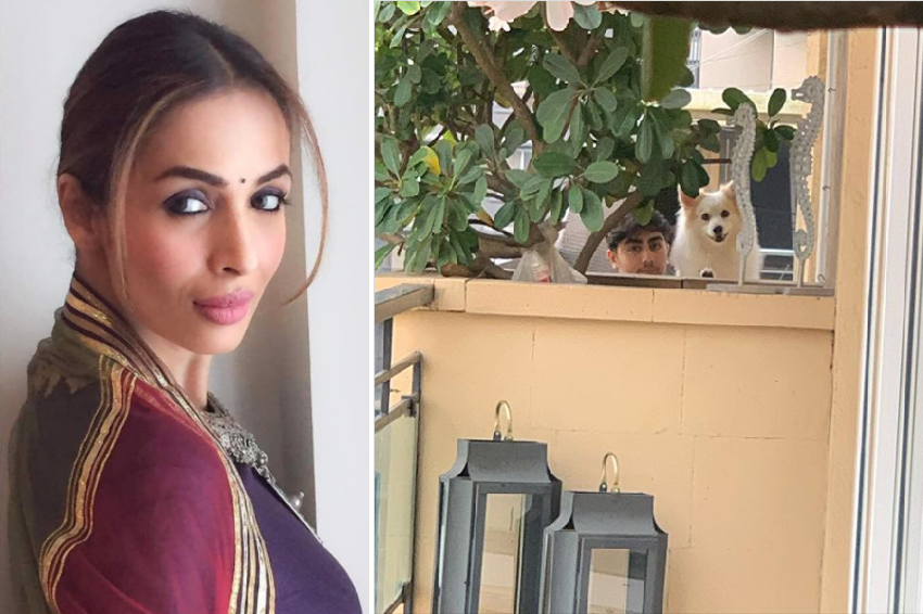 See Why is Malaika Arora's Heart Broken these days?