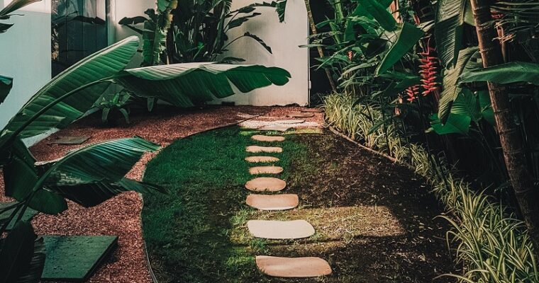 Tips for Having Best & Modern Garden Landscaping